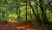 Trail Walk LONGPONT - en forêt de Retz_29_Longpont_la cave du Diable_A - Photo 16