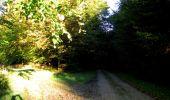 Trail Walk LONGPONT - en forêt de Retz_29_Longpont_la cave du Diable_A - Photo 43