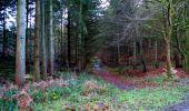Trail Walk LONGPONT - en forêt de Retz_29_Longpont_la cave du Diable_A - Photo 11