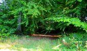 Trail Walk LONGPONT - en forêt de Retz_29_Longpont_la cave du Diable_A - Photo 46