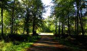 Trail Walk LONGPONT - en forêt de Retz_29_Longpont_la cave du Diable_A - Photo 90