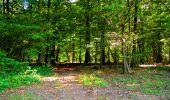 Trail Walk LONGPONT - en forêt de Retz_29_Longpont_la cave du Diable_A - Photo 159