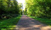 Trail Walk DAMPLEUX - en forêt de Retz_80_sur la Route Tortue et la Route Droite - Photo 222