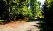 Trail Walk LONGPONT - en forêt de Retz_29_Longpont_la cave du Diable_A - Photo 125