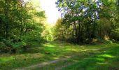 Trail Walk LONGPONT - en forêt de Retz_29_Longpont_la cave du Diable_A - Photo 215