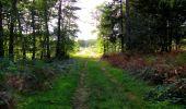 Trail Walk LONGPONT - en forêt de Retz_29_Longpont_la cave du Diable_A - Photo 246