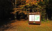 Trail Walk LONGPONT - en forêt de Retz_29_Longpont_la cave du Diable_A - Photo 28