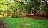 Trail Walk LONGPONT - en forêt de Retz_29_Longpont_la cave du Diable_A - Photo 249