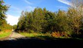 Trail Walk DAMPLEUX - en forêt de Retz_80_sur la Route Tortue et la Route Droite - Photo 276