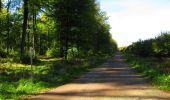 Trail Walk DAMPLEUX - en forêt de Retz_80_sur la Route Tortue et la Route Droite - Photo 201
