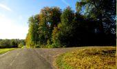 Trail Walk LONGPONT - en forêt de Retz_29_Longpont_la cave du Diable_A - Photo 87