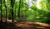 Trail Walk LONGPONT - en forêt de Retz_29_Longpont_la cave du Diable_A - Photo 98