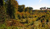 Trail Walk LONGPONT - en forêt de Retz_29_Longpont_la cave du Diable_A - Photo 121