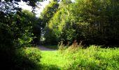 Trail Walk LONGPONT - en forêt de Retz_29_Longpont_la cave du Diable_A - Photo 176
