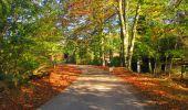 Trail Walk LONGPONT - en forêt de Retz_29_Longpont_la cave du Diable_A - Photo 32