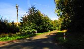Trail Walk DAMPLEUX - en forêt de Retz_80_sur la Route Tortue et la Route Droite - Photo 200