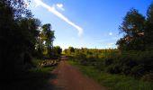 Trail Walk LONGPONT - en forêt de Retz_29_Longpont_la cave du Diable_A - Photo 181