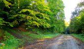 Trail Walk LONGPONT - en forêt de Retz_29_Longpont_la cave du Diable_A - Photo 59
