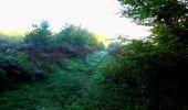 Trail Walk LONGPONT - en forêt de Retz_29_Longpont_la cave du Diable_A - Photo 6