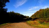 Trail Walk DAMPLEUX - en forêt de Retz_80_sur la Route Tortue et la Route Droite - Photo 17
