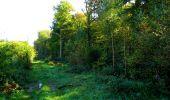 Trail Walk LONGPONT - en forêt de Retz_29_Longpont_la cave du Diable_A - Photo 172