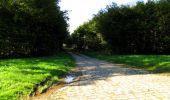 Trail Walk LONGPONT - en forêt de Retz_29_Longpont_la cave du Diable_A - Photo 190