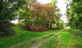 Trail Walk LONGPONT - en forêt de Retz_29_Longpont_la cave du Diable_A - Photo 212