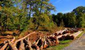 Trail Walk LONGPONT - en forêt de Retz_29_Longpont_la cave du Diable_A - Photo 118