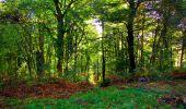 Trail Walk LONGPONT - en forêt de Retz_29_Longpont_la cave du Diable_A - Photo 15