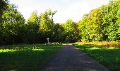 Trail Walk DAMPLEUX - en forêt de Retz_80_sur la Route Tortue et la Route Droite - Photo 183
