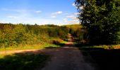 Trail Walk LONGPONT - en forêt de Retz_29_Longpont_la cave du Diable_A - Photo 177