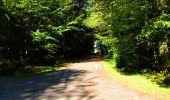 Trail Walk LONGPONT - en forêt de Retz_29_Longpont_la cave du Diable_A - Photo 126
