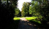 Trail Walk LONGPONT - en forêt de Retz_29_Longpont_la cave du Diable_A - Photo 196