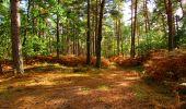 Trail Walk LONGPONT - en forêt de Retz_29_Longpont_la cave du Diable_A - Photo 221