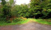 Randonnée Marche LONGPONT - en forêt de Retz_28_Longpont_Cabaret_A - Photo 31