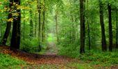 Randonnée Marche LONGPONT - en forêt de Retz_28_Longpont_Cabaret_A - Photo 178