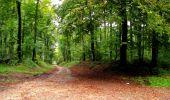Randonnée Marche LONGPONT - en forêt de Retz_28_Longpont_Cabaret_A - Photo 139