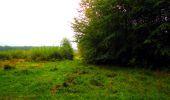 Randonnée Marche LONGPONT - en forêt de Retz_28_Longpont_Cabaret_A - Photo 185