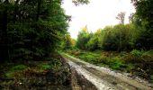 Randonnée Marche LONGPONT - en forêt de Retz_28_Longpont_Cabaret_A - Photo 61