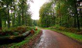 Randonnée Marche LONGPONT - en forêt de Retz_28_Longpont_Cabaret_A - Photo 34
