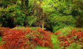 Randonnée Marche LONGPONT - en forêt de Retz_28_Longpont_Cabaret_A - Photo 173