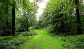 Randonnée Marche LONGPONT - en forêt de Retz_28_Longpont_Cabaret_A - Photo 96