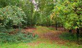 Randonnée Marche LONGPONT - en forêt de Retz_28_Longpont_Cabaret_A - Photo 13