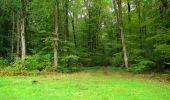 Randonnée Marche LONGPONT - en forêt de Retz_28_Longpont_Cabaret_A - Photo 187