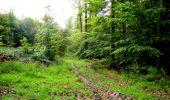 Randonnée Marche LONGPONT - en forêt de Retz_28_Longpont_Cabaret_A - Photo 1