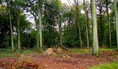 Randonnée Marche LONGPONT - en forêt de Retz_28_Longpont_Cabaret_A - Photo 80