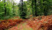 Randonnée Marche LONGPONT - en forêt de Retz_28_Longpont_Cabaret_A - Photo 91