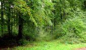 Randonnée Marche LONGPONT - en forêt de Retz_28_Longpont_Cabaret_A - Photo 140