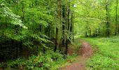Randonnée Marche LONGPONT - en forêt de Retz_28_Longpont_Cabaret_A - Photo 97