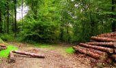 Randonnée Marche LONGPONT - en forêt de Retz_28_Longpont_Cabaret_A - Photo 56